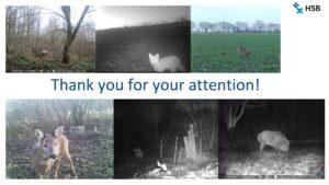 Biologen/innen berichten über ihre BDW-Projekte im Wintersemester